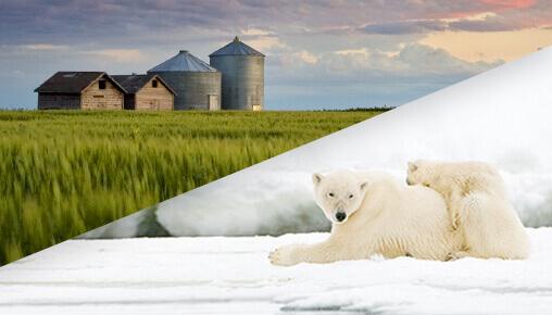 Régions rurales et nordiques du Manitoba